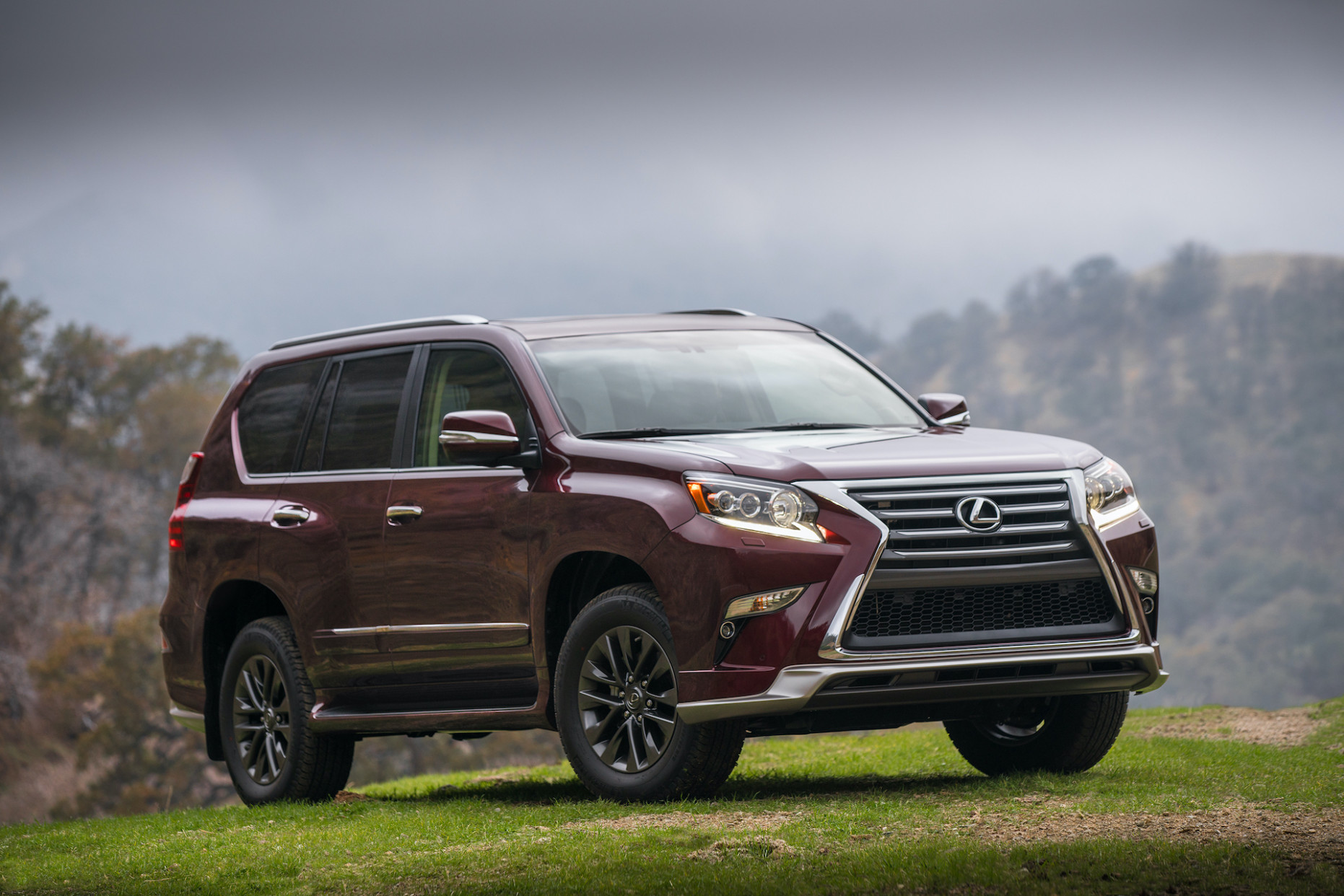 5 Lexus GX Review, Ratings, Specs, Prices, and Photos - The Car ...