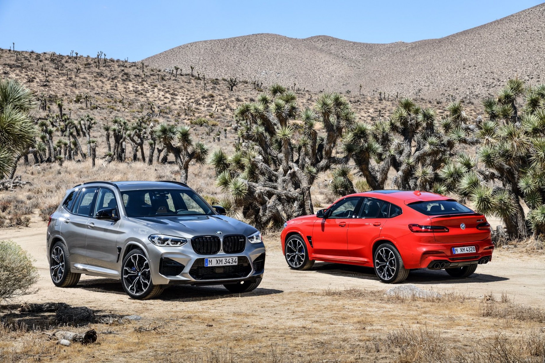Ordering Guide and Pricing Guide for the 6 X6M and 6 X6M | 2020 BMW Order Guide