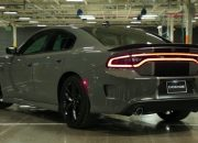 2020 Dodge Wildcat